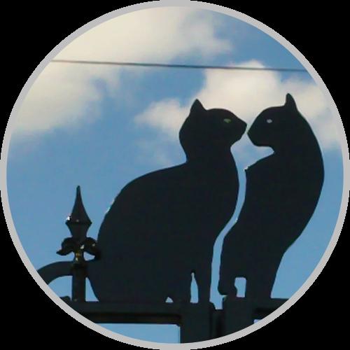 Portail de Chats